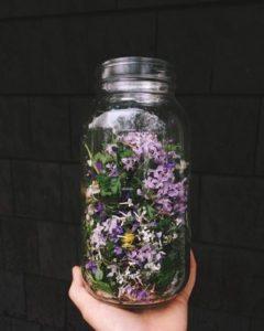 Herbal tinctures