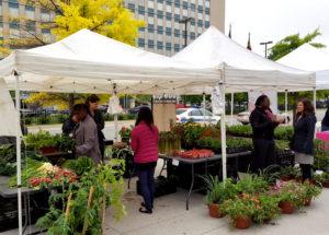 State Center Market 2
