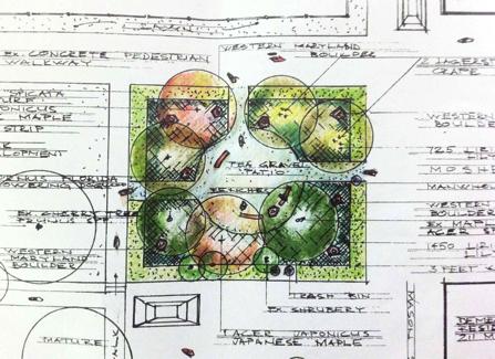 Plan for Ana's Garden